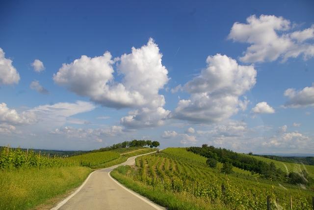 Paesaggio del Comune di  Castagnole Monferrato (AT)