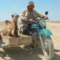 Camels and motorbikes (1)