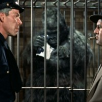 Animals in Movies Blogathon: Gorilla at Large (1954)