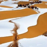 The Gobi in Winter