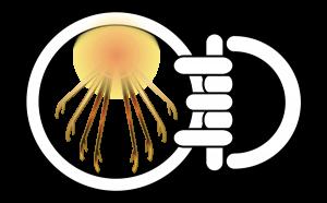 Logo-900x560-300x186