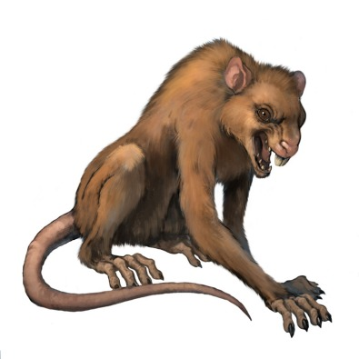 rattoscimmia